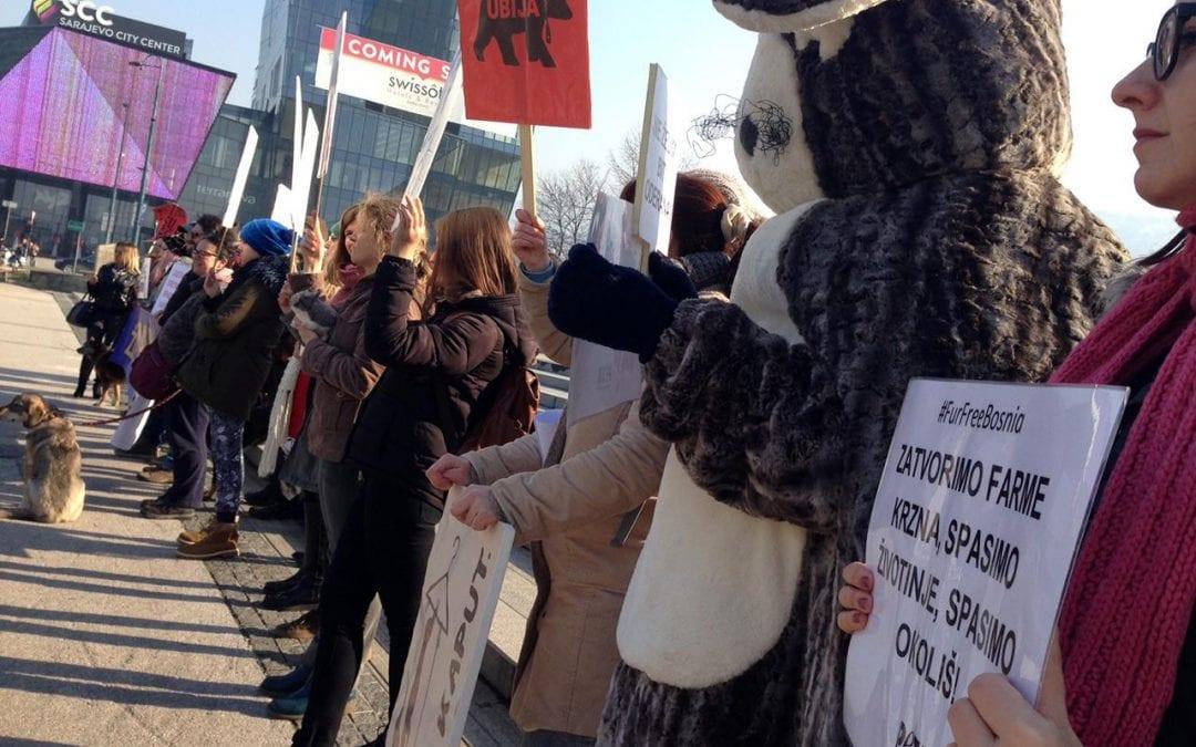 U Srbiji zabrana uzgoja i ubijanja životinja radi krzna