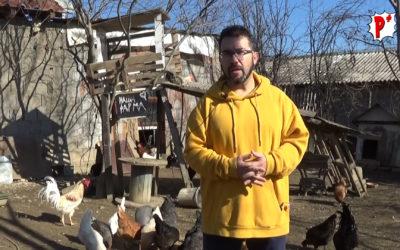 Mladi i uspešni ljudi počinju da bježe iz zagađenog Skopja